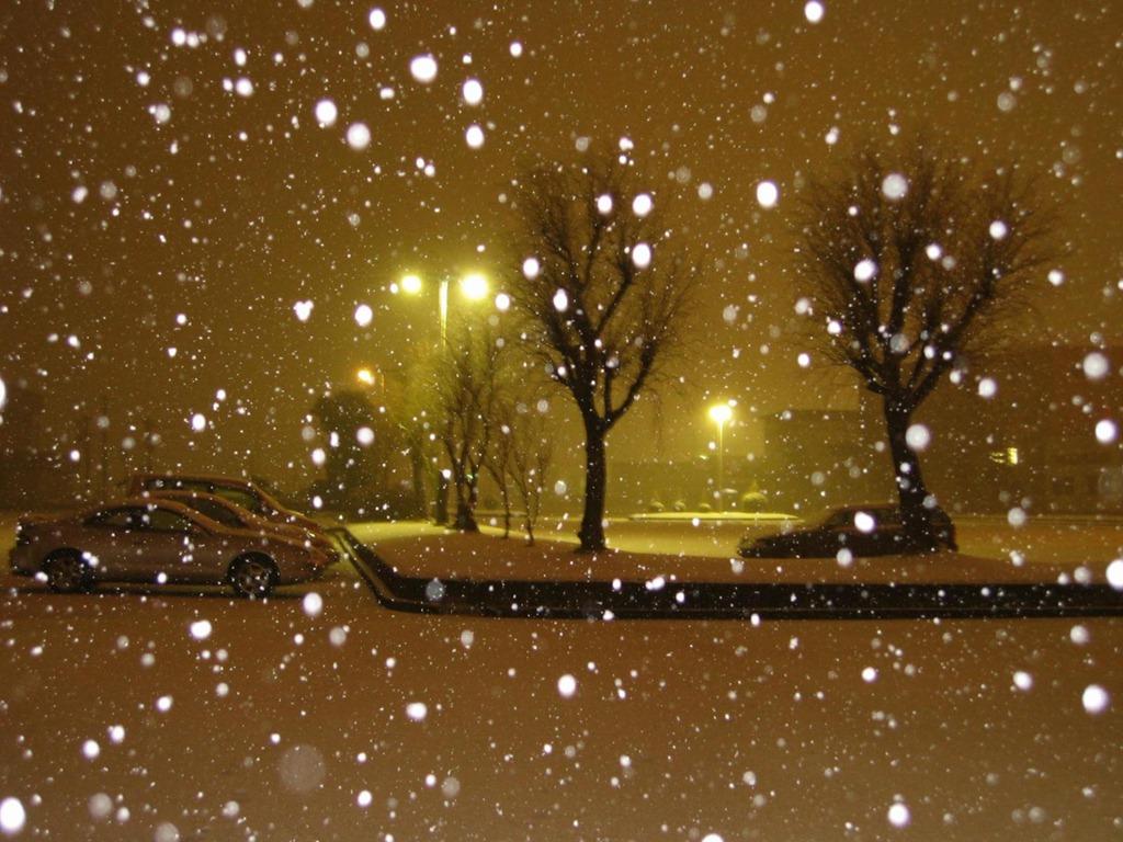 Snowfall at nig...